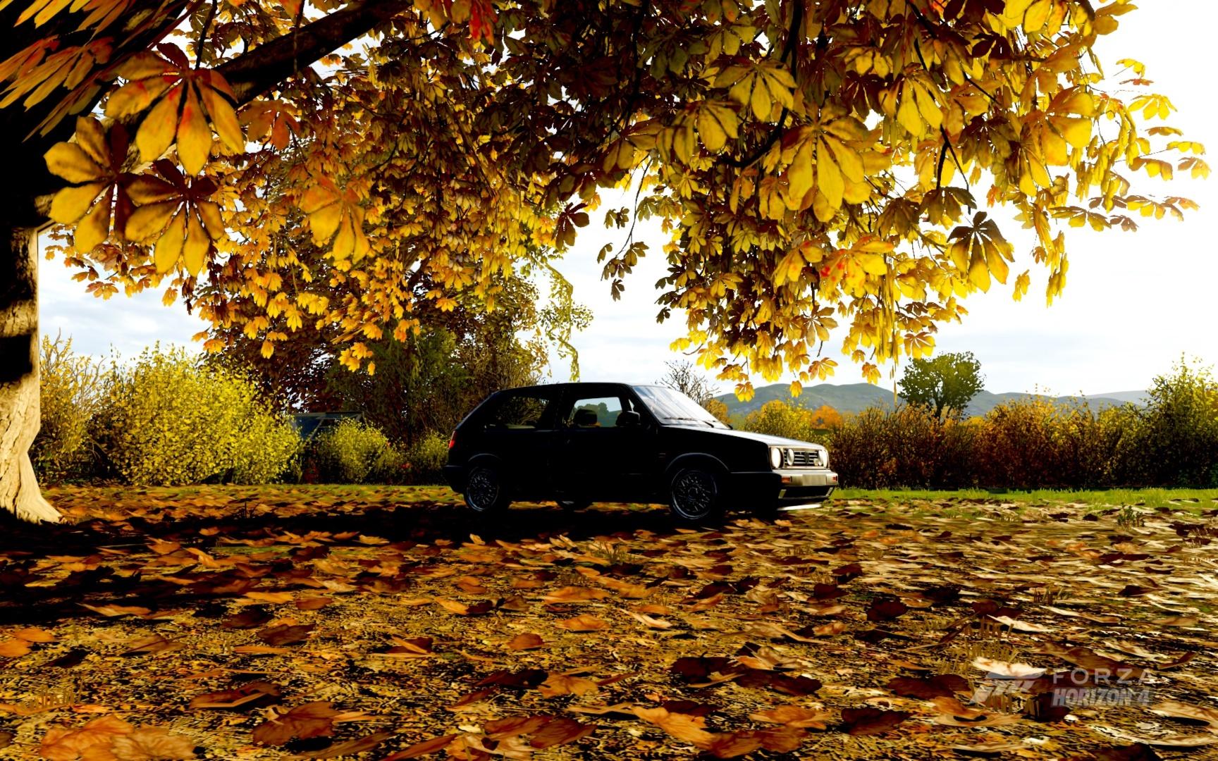 Forza_07.jpg